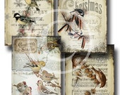 Birds In Snow - Christmas Hang Tags - Digital Collage Sheet