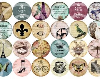 One Inch Printable Circles - Birdies And Things II - Digital Collage Sheet