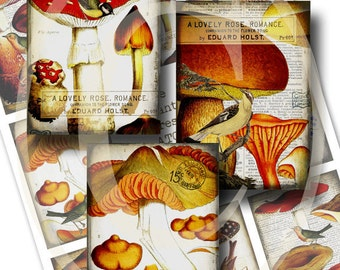 Mushrooms and Birds ATC - Enchanted Forest - Digital Collage Sheet - red orange gold yellow