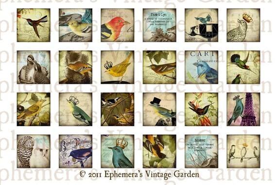 Printable Vintage Bird Inchies  - Digital Collage MINI SHEET - jewelry pendant 1x1 inch squares