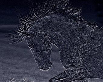 Midnight Cloud - Fine Art Wild Horse Photograph - Wild Horse - Cloud - Blue Fine Art Print