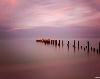 Fine Art Print Abandon pier in naples, Florida
