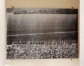 Magnolia Masten / Grossformat Halbton print / 24 x 36 schwarz-weiß-Poster