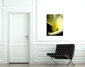 Lily of the Nile - 24 x 32 Fine Art Stretched Giclée canvas - FREE SHIPPING - Home Decor - Ready to Hang