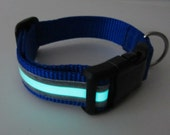 1 Inch  Adjustable Glow in the Dark Reflective Collar