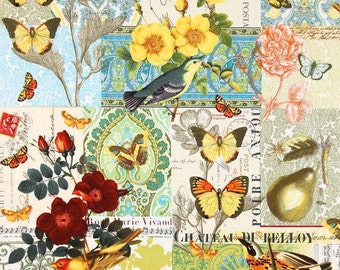 Fabric 1 Yard  ANJOU POUR VOUS Butterfly Pear Bird French Journal Birds Flowers Collage Michael Miller Quilting Sewing