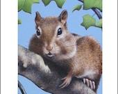 ACEO ART PRINT chipmunk wildlife animal miniature free shipping