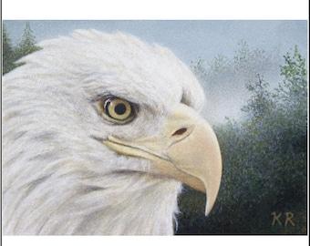 aceo art print American Bald Eagle bird