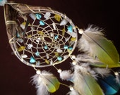 Dream Catcher- Soft Earth- Devils Claw Dream Catcher- with Macaw Feathers- Made to Order