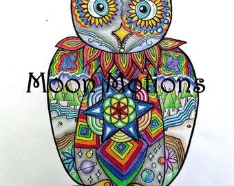 Wall Art- Print- Sacred Wisdoms-  Cosmic Rainbow Owl 11x 14- Print of Original