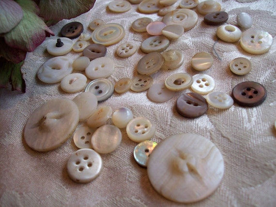 Vintage collection shell buttons 50