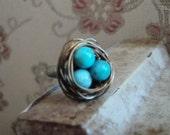 Robin's Nest Ring