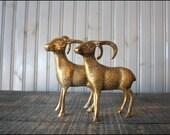 Brass Ram Pair // Solid Brass Paperweights