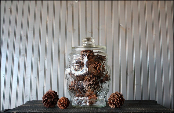 reserved//glass owl cookie jar