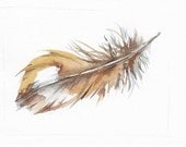 Saw Wet Owl Feather watercolor 5x7 inch O.R.I.G.I.N.A.L watercolor