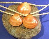 Set of Three - Hand Carved Palm Beach Sea Shell Necklaces- Footprint Collection
