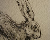 FREE POSTAGE  Original pen and wash drawing of a Hare