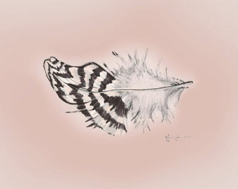 Silver Stripe Feather