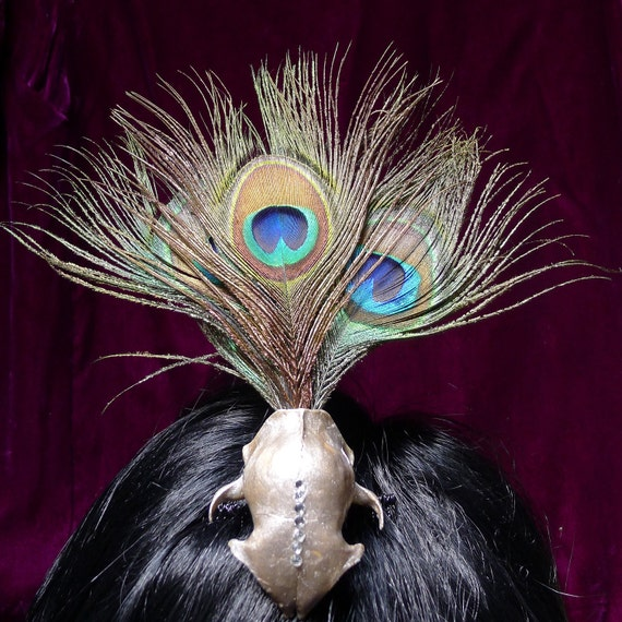 Real Skull Fascinator Hair Comb Featuring Peacock Feathers Gold Skull Swarovski Rhinestones Hair Accessory Gothic  Burlesque 2