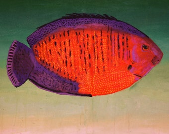 Coral Beauty // refrigerator magnet // fish // fish magnet