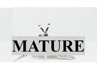 Mature  3 Way Gay Pendant  Solid Sterling Silver Free Shipping