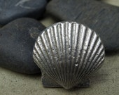 Shell Cabinet Knobs - Special on sale