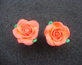 Giant Rose 2 gauge plugs