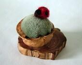 Charming walnut shell pincushion with ladybug pin