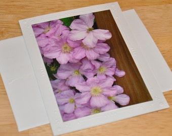 Photo Greeting Card - Clematis