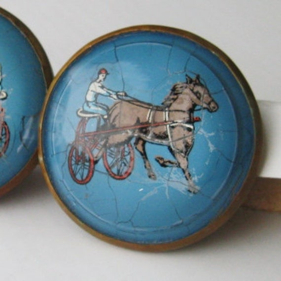 Vintage Equestrian Bridle Rosettes: Harness Racing Glass Domed Horse Jewelry