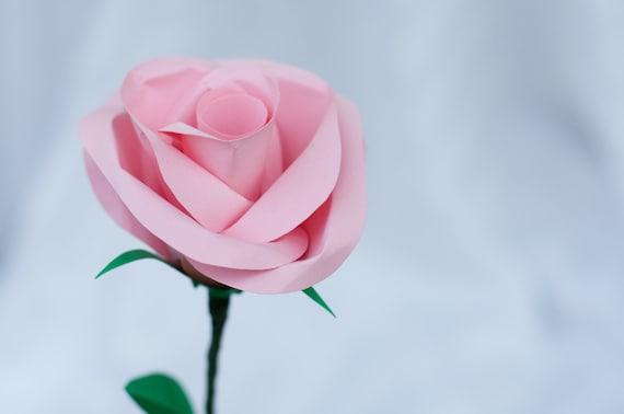 Single Long Stem Paper Rose