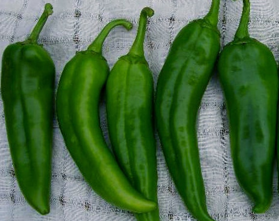 Anaheim Pepper Heirloom Variety Great Flavor Sweet With A Touch Of Heat Seeds Best Seller