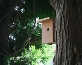 De Stijl House, upcycled for songbirds