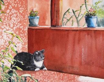 "Cat on an adobe wall. Monastery Cat.  A decorative CERAMIC TILE wall  art  - 8"" x 10"".  Free U.S. shipping."