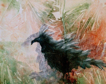 Black raven contemplating his world. The Raven Sitting Lonely is a fine art GICLEE. Free U.S. shipping.