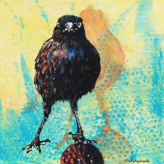"Look Ma, No Hands.  A bold dare-devil balancing blackbird with an intense stare.  Decorative CERAMIC TILE  - 8"" x 8"".  Free U.S. shipping."