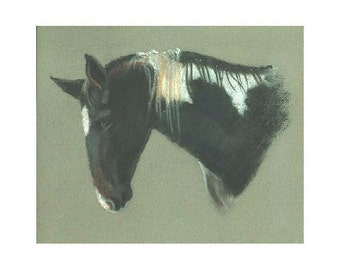 Horse Black and White Paint print of my original pastel