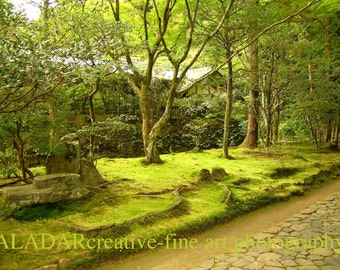 "Feng Shui Green Spring ""Landscape with Moss and Stone Alley / Sketches from Kyoto""  Zen - fine art photography 8""x 10"""