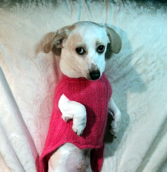 Mohair dachshund jumper sweater handmade pets clothing in candy pink