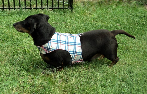 Dog harness adjustable reversible blue plaid red paisley soft cotton