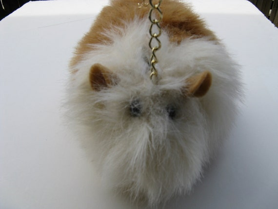 Guinea Pig Purse White and Honey