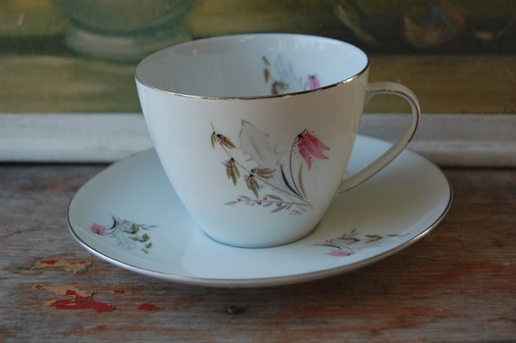 Vintage German Teacup And Saucer By Royal Duchess Mountain Bell Pattern