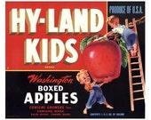 Hy-Land Kids Washington Apple Label (Red)
