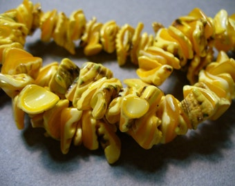 Shell Bead Yellow 10-14MMs