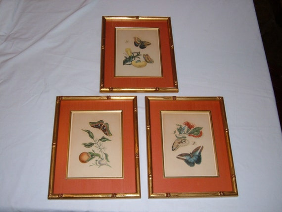 3 Vintage Asian Style Butterfly Framed Prints