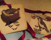 Small  Gift  Tags  With  Birds   aAnd  Nest  Dimensional