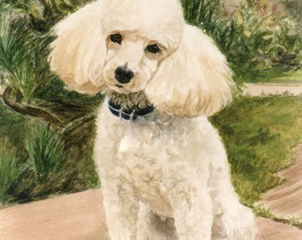 Poodle Print, Poodle In Garden Art Print, Poodle Art, Poodle Watercolor Print from Original Painting by P. Tarlow