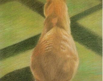 Orange Tabby Cat Art, Orange Tabby Cat Print, Tabby Cat Drawing, Cat Art, Cat Print, Cat Drawing from Colored Pencil Drawing by P. Tarlow