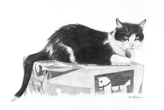 Arte de gato blanco y negro blanco y negro gato Print