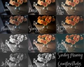 Adobe LR3 Presets: Sunday Morning Presets from CaraRosePhotos, Set of 10 presets for use in Lightroom 3